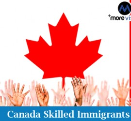 skilled immigrants